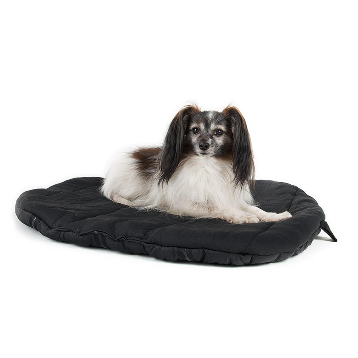 back on track matelas pour chien horze. Black Bedroom Furniture Sets. Home Design Ideas