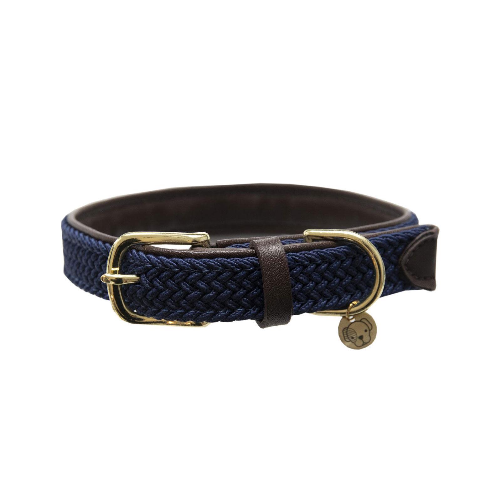 collier pour chien hv polo