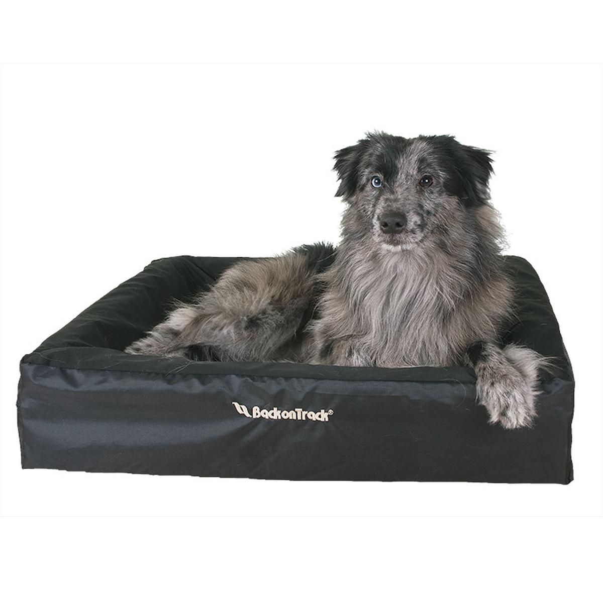 housse pour matelas de chien back on track horze. Black Bedroom Furniture Sets. Home Design Ideas