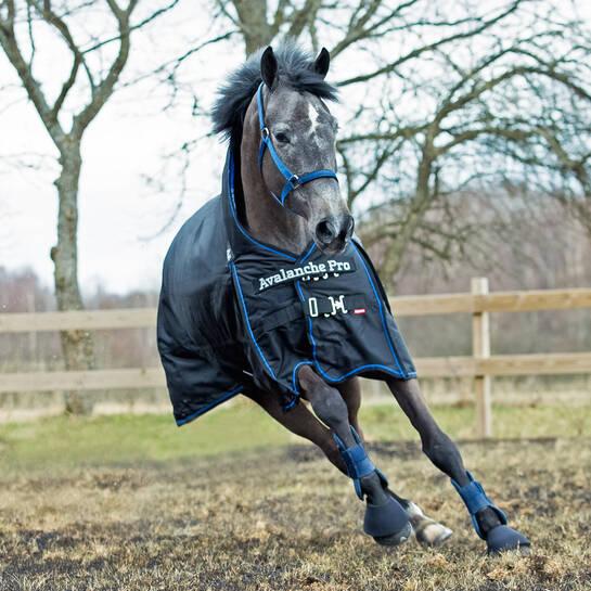 Pony Decken: Couvertures Pour Chevaux